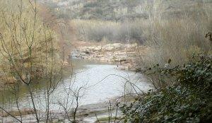 Imatge del riu Llobregat