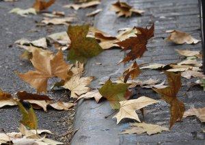 El próximo otoño será más cálido de lo normal en toda España y menos lluvioso en el noroeste de la Península
