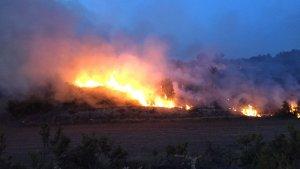 Les flames cremen quatre hectàrees de matoll a Barberà de la Conca