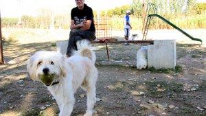 Tarragona va contractar detectius per vigilar els veïns que no recollien els excrements de les seves mascotes.