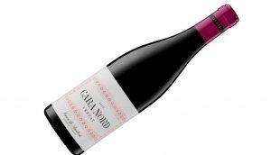 El nou vi de Cara Nord és un trepat
