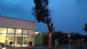 La tempesta ha fet estralls a Torredembarra