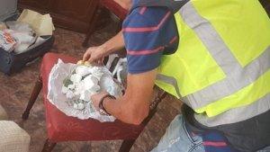 Dins de la casa s'han trobat 255 grams de cocaïna, 55 grams de MDMA, 34 caixes de Viagra, una bàscula de precisió i 7.900 euros en efectiu