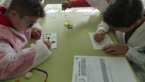 El Dia de la Ciència a les escoles ha fet aturada amb tallers a Les Eres de Creixell