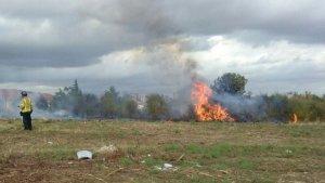 Han cremat matolls i vegetació dels camps abandonats