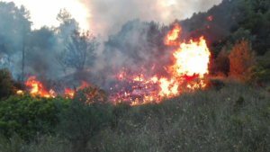 Incendi forestal a Vacarisses