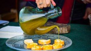 L'oli del raig comença a exhibir-se amb les festes de l'oli nou.