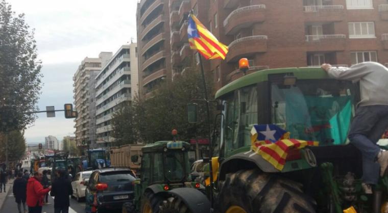 Imatge dels tractors a la manifestació