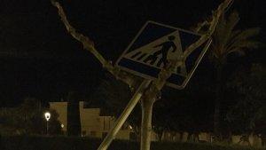 Un senyal de trànsit, arrencat i abandonat a un arbre a la Riera