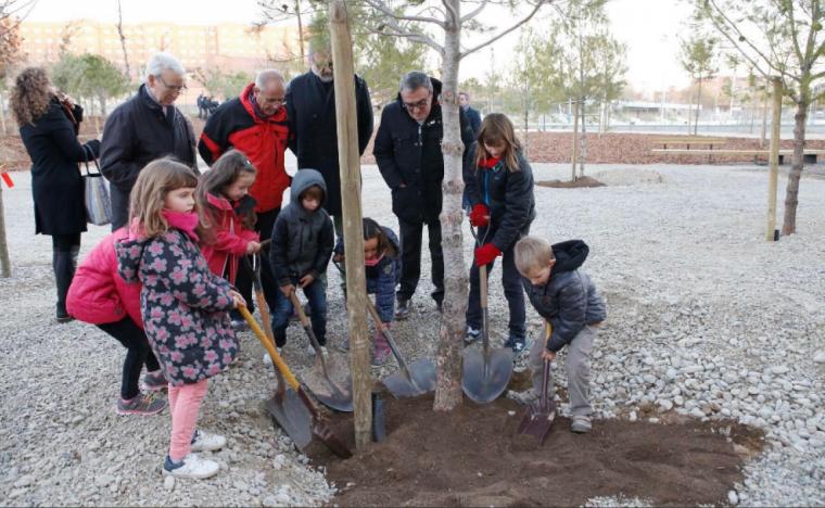 Imatge de la plantada d'arbres al bosc urbà de Balàfia
