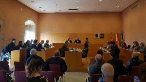 El ple de Torredembarra ha rebutjat la moció de C's, PP i Avui Democràcia