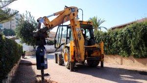 Es replantaran gairebé 500 arbres als carrers de Costa Daurada