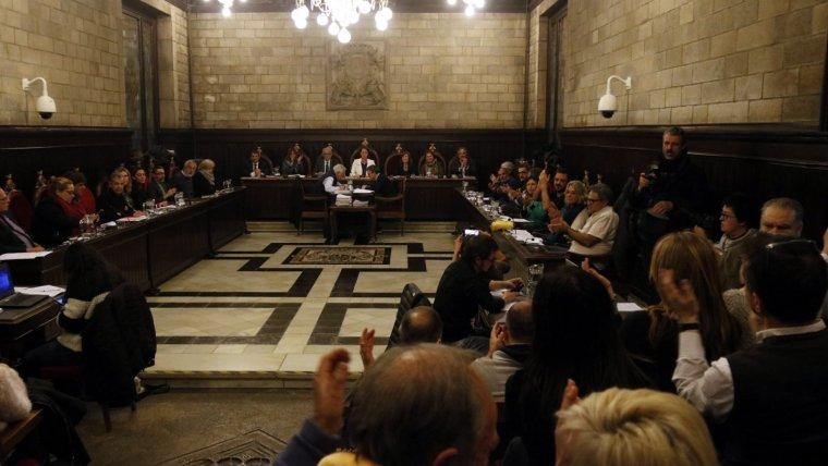 Part del públic s'ha aixecat i ha aplaudit quan el ple ha aprovat canviar el nom