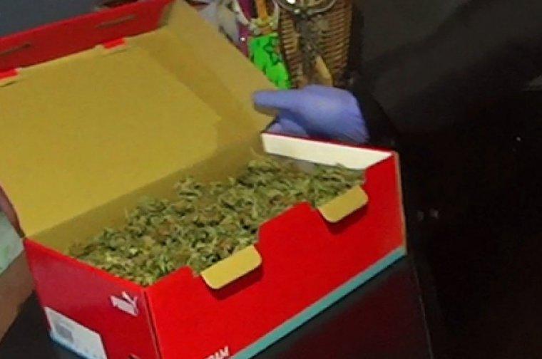 Una caixa plena de marihuana localitzada al punt de venda de droga de Fraga