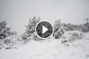 Imatge de la nevada que va caure al Picarany.