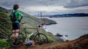 Las mejores marcas de bicicletas tanto de montaña como de carretera. Elige la tuya.