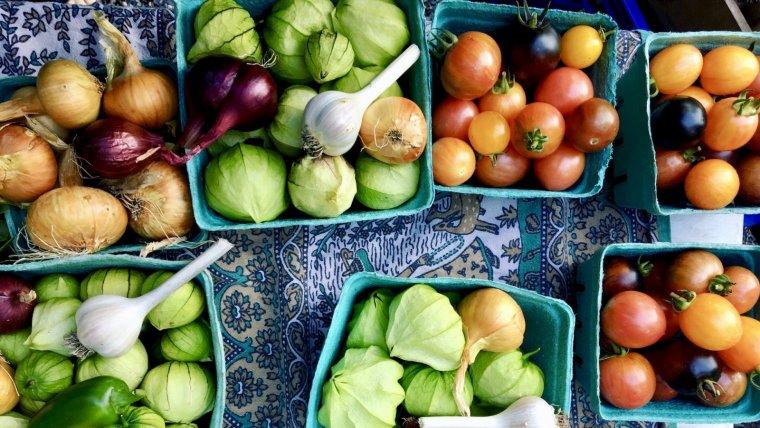 En que consiste la dieta ovolactovegetariana