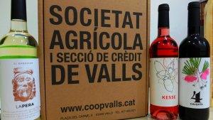 Els vins van ser presentats en la Favatada Popular