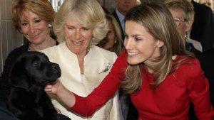 Imagen de la reina Letizia acariciando un cacghorro junto a Camila Parker y Esperanza Aguirre.