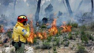 Imagen del incendio en Yeste