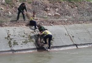 Imatge del moment el qual rescaten a l'animal