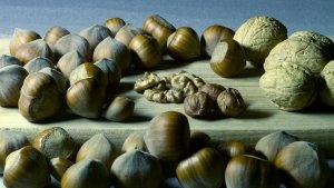 Los alimentos más ricos en magnesio para equilibrar los niveles en sangre.