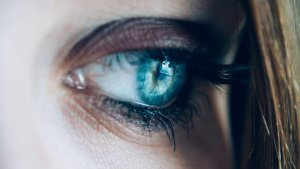 Cada una de las partes del ojo cumple una función vital.