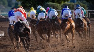 Con estos vídeos de carreras de caballos entenderás cómo funcionan.