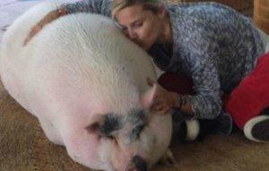 Eugenia con su cerdo Bacon.