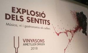 VinyaSons 2018