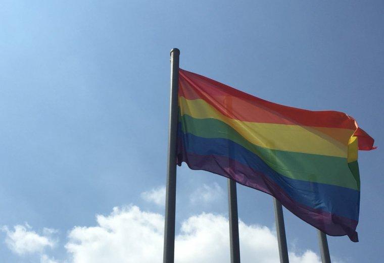 La bandera multicolor hissada davant l'Ajuntament de Cerdanyola