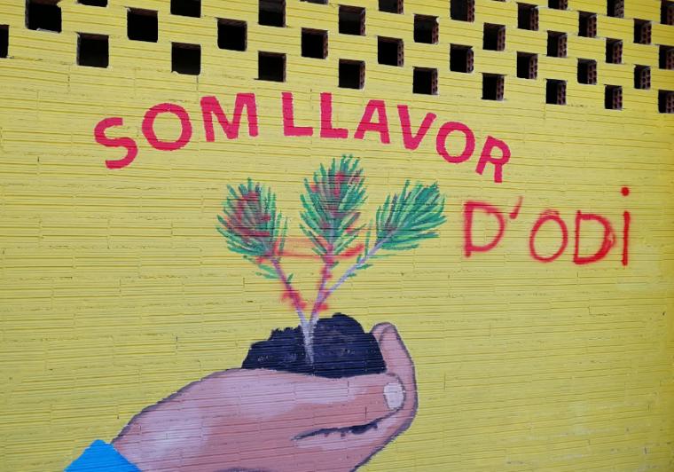 Pintada al mural de Cappont
