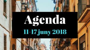 Agenda 11-17 de juny de 2018