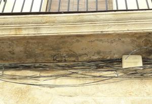 Imatge de la destrucció de nius a Borges Blanques