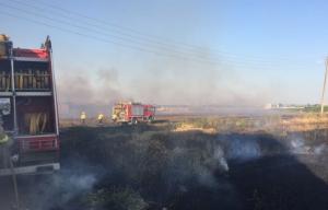 Imatge de l'incendi de Torregrossa