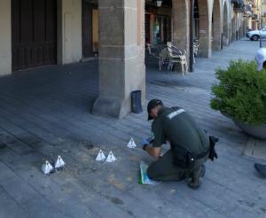 Imatge d'un agent rural recollint les cries mortes a Balaguer