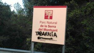 Imatge d'una de les pintades que han aparegut al Parc Natural de la Serra del Montsant