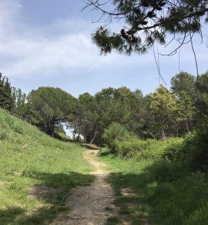 Part del Camí Verd a Bellaterra