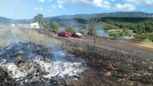Cremen 7.000 metres quadrats de rostolls a Vimbodí i Poblet.