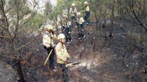 Imatge dels Bombers treballant en l'incendi forestal de Tivissa.