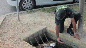 La Guàrdia Civil ha denunciat un veí de Deltebre