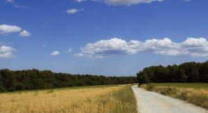 La via verda del Camí dels Monjos al seu pas per Terrassa