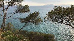 L'espai de Cala Morisca ofereix unes vistes privilegiades.