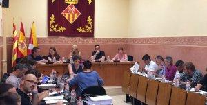 Ple Municipal del mes de juliol