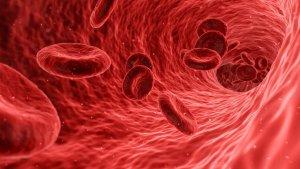 Todos los tipos de sangre que existen (los más raros y los más comunes).