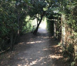 Un tram del Camí Verd a Bellaterra
