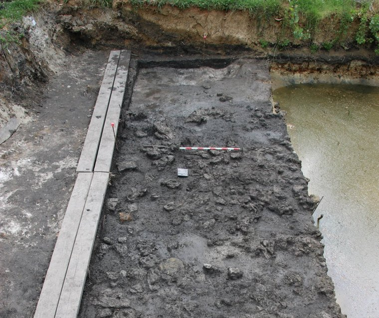 Zona excavada a la Draga (Banyoles)