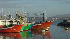 Imagen del puerto de Hondarribia.