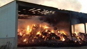 Imatge de l'incendi que s'ha declara aquesta matinada a Alcarràs