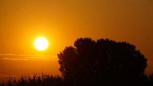 La calor tornarà a ser la protagonista d'aquest diumenge